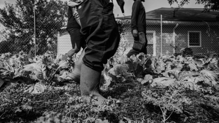 A black and white image of someone's boots on a farm. Two other people are standing in the background. In the foreground is kale.